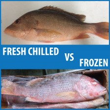 Differences Between Fresh and Frozen Fish