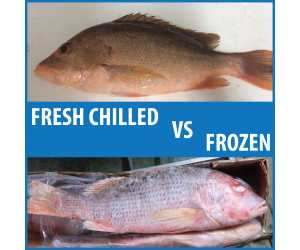 Differences Between Fresh and Frozen Fish in Malaysia