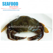 Soft shell crab 软壳蟹 NW 0.9kg