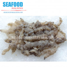 Mantis Prawn (without shell) 虾姑肉 ± 500G