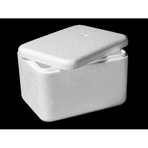 Thermal insulated box for packing your order