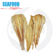Dried fish Fillet 材鱼