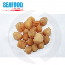 Mainland Dried Scallop 中国干贝 (中) (200 pcs per kg)